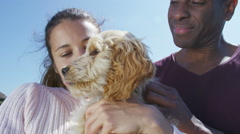 Stock Video Footage of Couple relaxing in the park with cute young cocker-poo puppy.