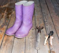 Wellingtons with garden tools on wooden floor Stock Photos