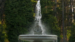 Stock Video Footage of Water fountain and evergreens