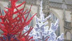 Basilique Notre Dame of Alencon in Normandy France by the day after Christmas Stock Footage