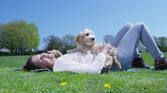 Woman relaxing in the park with 2 cute young cocker-poo puppies Stock Footage