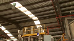 Agave distillery plant - stock footage