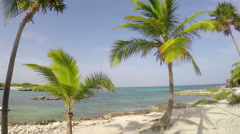 Gorgeous tropical scene with beach, palm trees and ocean Stock Footage