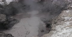 Bubbling hot mud and steam in New Zealand Stock Footage