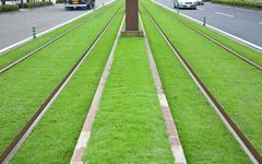 Tramway tracks on green lawn - stock photo