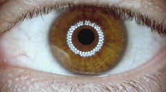Macro extreme cu eye iris, pupil, contracting, slow motion Stock Footage