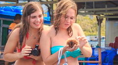 Girl tourist holds shows small sea-urchin tourists take pictures Stock Footage