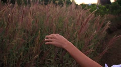Slomo Girl Touching Grass Golden Field Stock Footage
