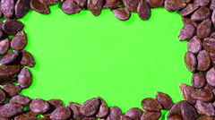 Seeds on a Green Screen Stock Footage