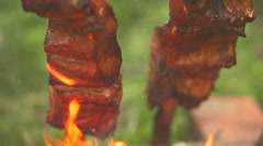 Cooking pieces of fish on an open fire front view close up Stock Footage