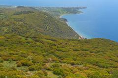 Mediterranian seashore landscape aerial view green bush sea coast Stock Photos