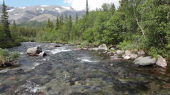 The Kuniok river flowing in valley of Khibiny mountain. Summer season Stock Footage