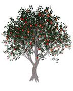 Apple tree - 3D render Stock Illustration