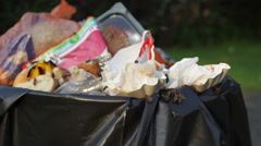 Bees fly all around overflowing garbage can, close up Stock Footage