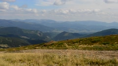 Meadow grass blown by wind in Carpathian Mountains Stock Footage