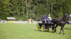 Carriage with black horse drive away 4K Stock Footage