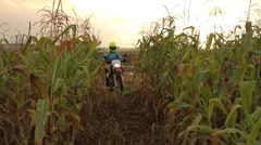 Female Biker Riding Through the Field Stock Footage