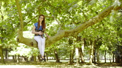 Cat and woman sit on big tree in park 4K  Stock Footage