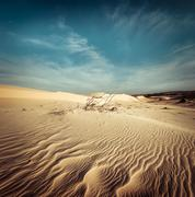Desert landscape with dead plants in sand dunes. Global warming Stock Photos