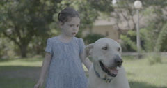 Little girl wearing a blue dress petting a big white dog - stock footage