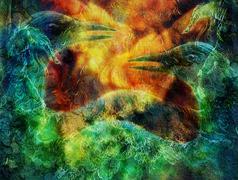 The phoenix bird collage. Stock Illustration