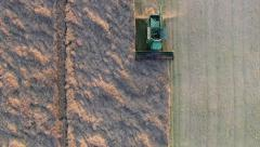 Combine harvester harvesting rapeseed (Aerial View) - stock footage
