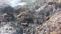 Stock Video Footage of smoking and smoldering ashes after fire
