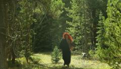 Barbarian viking in forest day Stock Footage