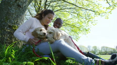 4K Couple relaxing in the park with 2 cute young puppies Stock Footage