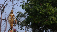 Gold Statue In Buddhist Thai Temple Religious Worship Trees  Monument Stock Footage