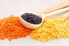 Wooden spoons with black, red and yellow lentils Stock Photos