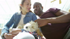 4K Couple relaxing at home with cute young puppy - stock footage