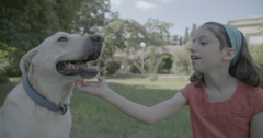 Girl petting a dog - stock footage