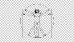 Animated Vitruvian Man by Leonardo Da Vinci with Alpha Stock Footage