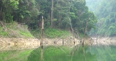 Beautiful reflection of forest island Stock Footage