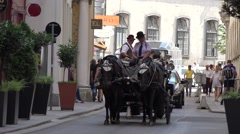 4K Vienna vintage horse carriage touristic transportation old town animal carts  Stock Footage