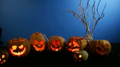 Group Of Carved Halloween Pumpkins Standing In A Row - stock footage
