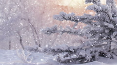 Frozen tree in park and heavy snowfall seamless loop Stock Footage
