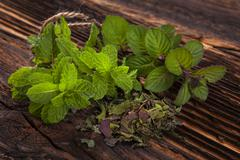 Stock Photo of Aromatic culinary herbs, mint.