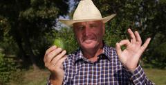Countryman Happy Smile Farmer Man Showing Lime Fruit Lemon Ok Sign Hand Gesture Stock Footage