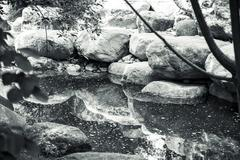 Black and white shot of a silent creek with big rocks Stock Photos