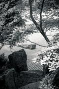 Black and white: japanese stone garden with plants Stock Photos