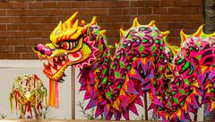 Chinese Dragon Dance Costume.. Stock Photos