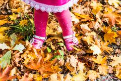 close-up of  baby feet in shoes on autumn leaves - stock photo