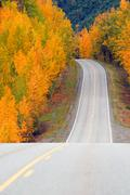 Fall Color Autumn Landscape Alaska Two Lane Road Highway - stock photo