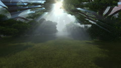 Magic forest, sun shinning through trees, camera fly Stock Footage