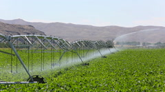 Crop Irrigation Pivot System Stock Footage