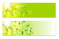 Shiny Spring Natural Leaves Background. Vector Illustration - stock illustration