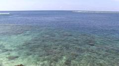 Siau Island coral reef 1 Stock Footage