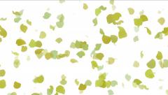 4k Leaves in fall,romantic harvest,ginkgo particle background,flower petals. - stock footage